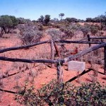 Mt Phillip Station Gascoyne