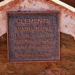CLEMENTS Shayne Maree